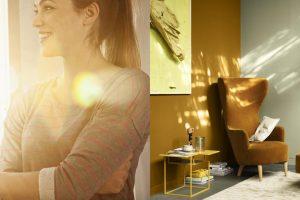Ánh sáng ảnh hưởng thế nào đến màu sắc ưa thích của chúng ta